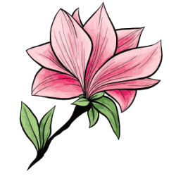I love Kawaii Designs avatar