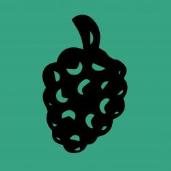 MulberryStore avatar
