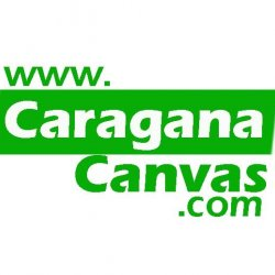 Caragana Canvas avatar