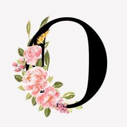 Orchid art avatar