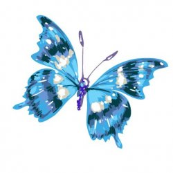 Artist Store  avatar