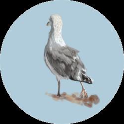 VectorAndWatercolor avatar