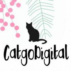 CatgoDigital Avatar