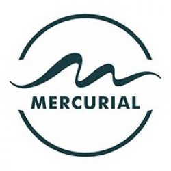 Mercurial Avatar