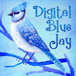 Digital Blue Jay avatar