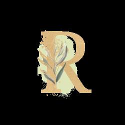 raghdaDesigns avatar