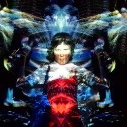 Lily-bell illustrations Avatar