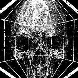 sebrodbrick avatar