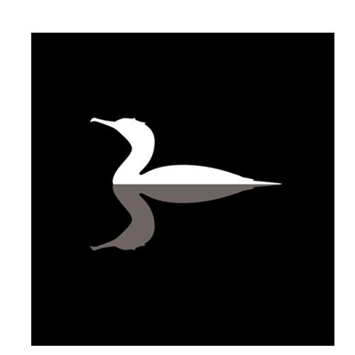 3IPfonts avatar