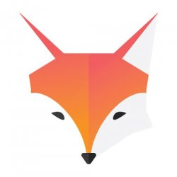 Running With Foxes avatar