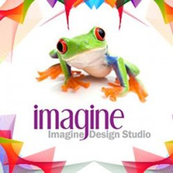 Imagine Design Studio avatar