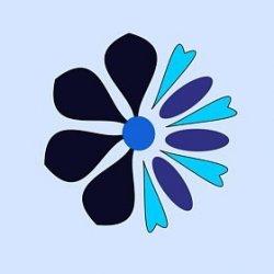 Merakiss33 avatar