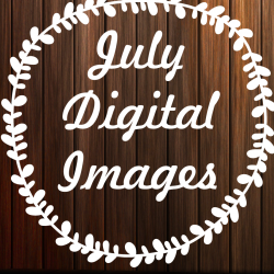 JulyDigitalImages avatar