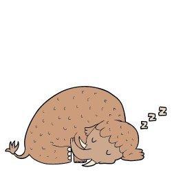 SleepyMammoth Avatar