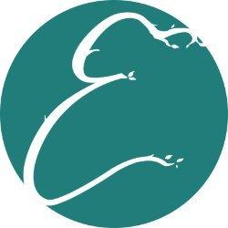 Enchanted Kiwi Designs avatar