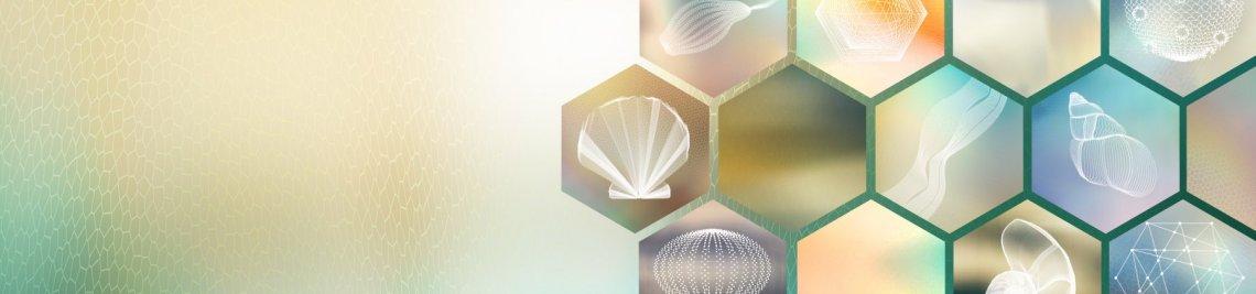 SPINEdesign Profile Banner