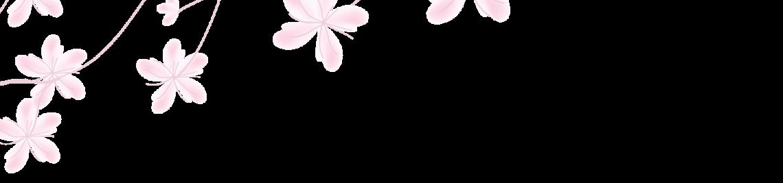 elsabenaa Profile Banner