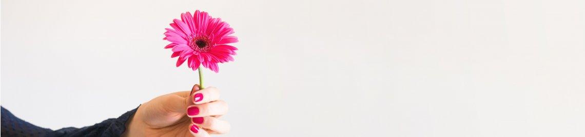 Daydreamer Profile Banner
