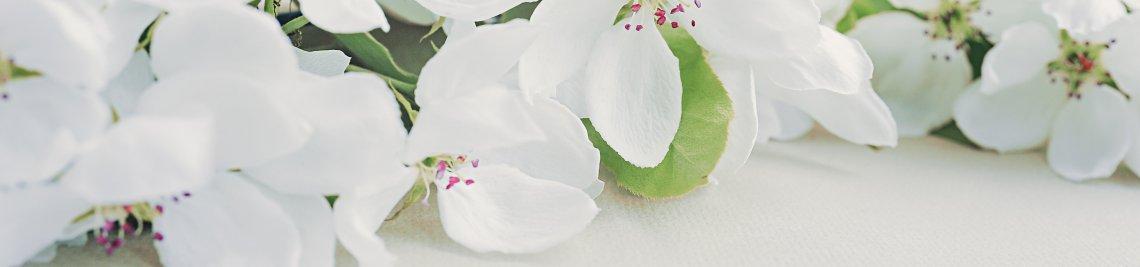 Aleksandra Pavlova Profile Banner