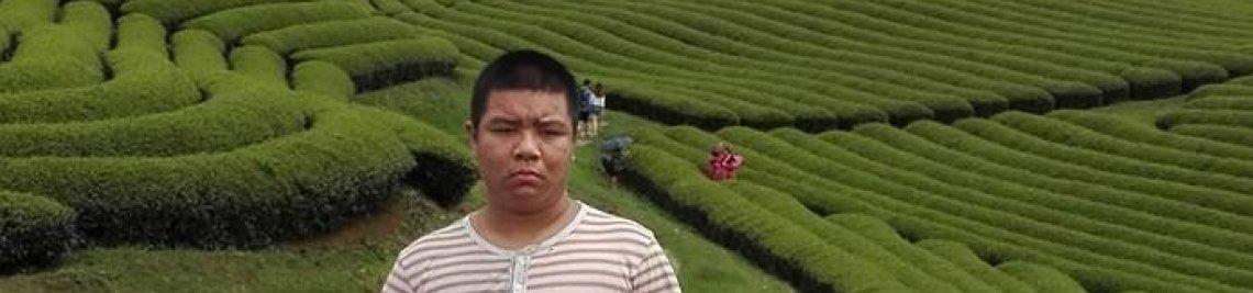 Phuong Vu Profile Banner