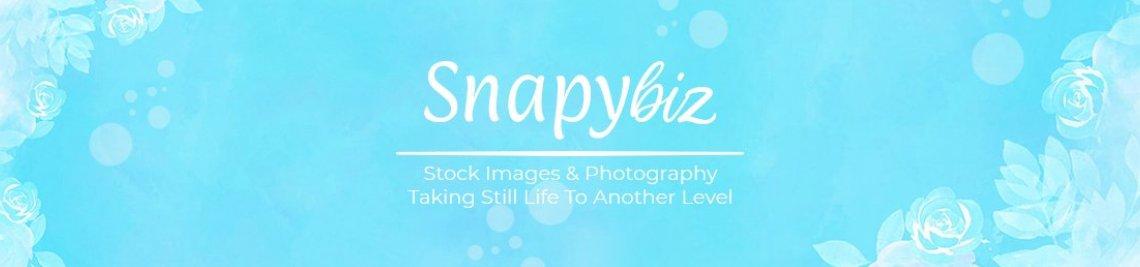 SnapyBiz Profile Banner