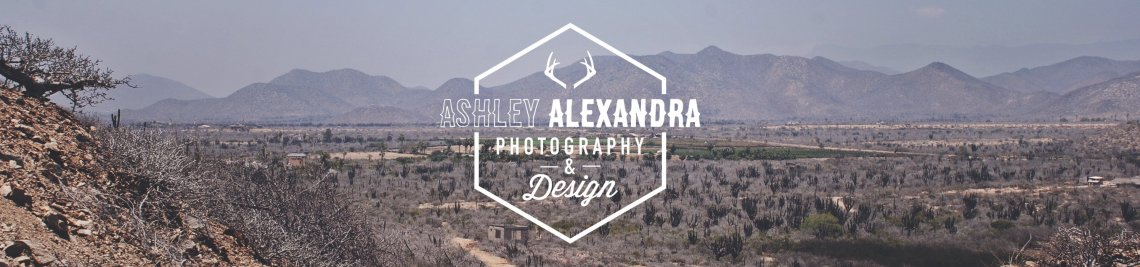 Ashley Alexandra Design Profile Banner