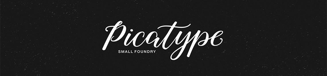 Picatype Profile Banner