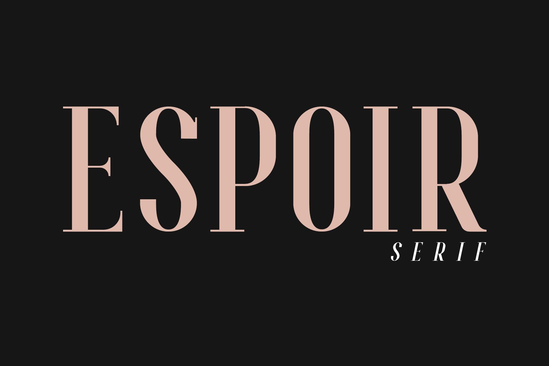Espoir Serif Font Family example image 2