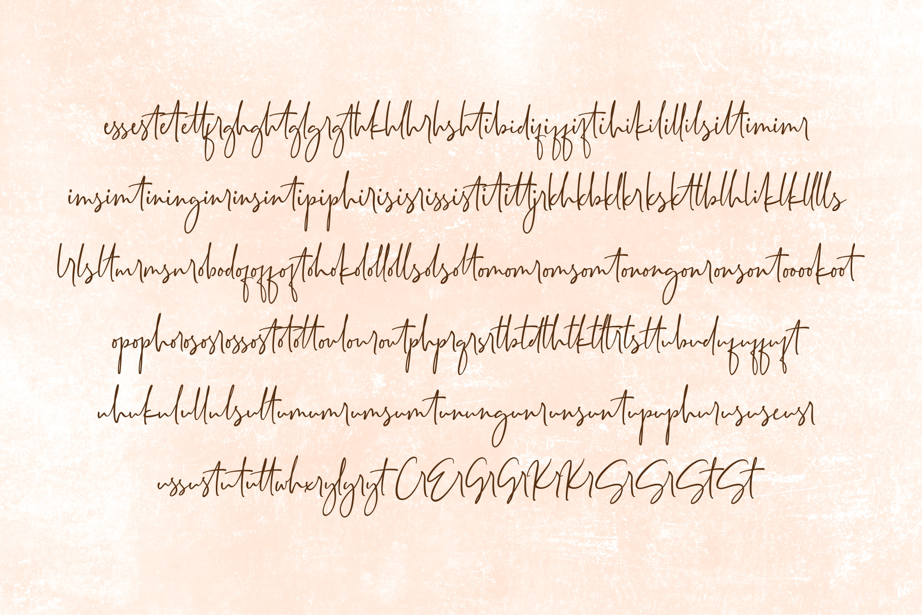 Seville Script Fonts example image 10