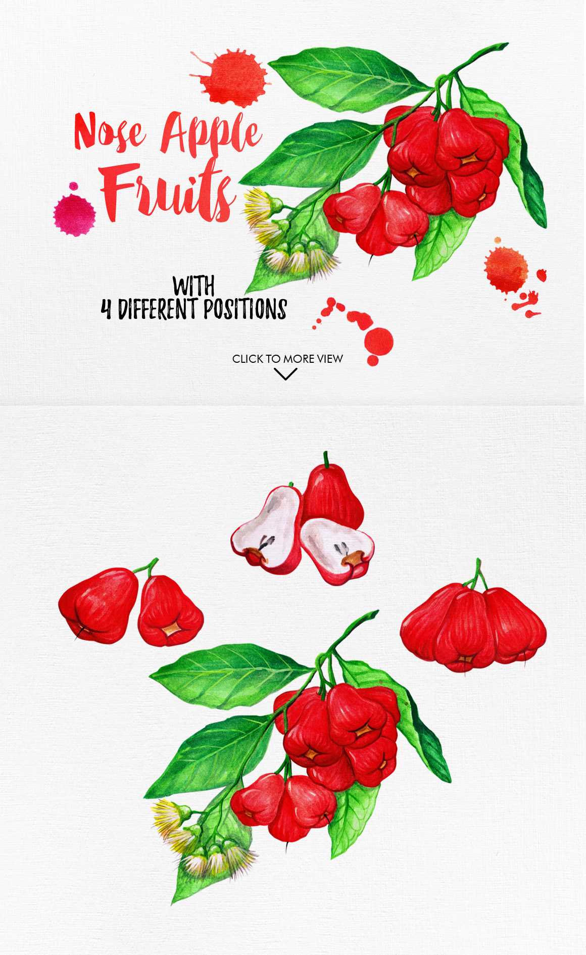 Watercolor Fruits Vol. 5 example image 5