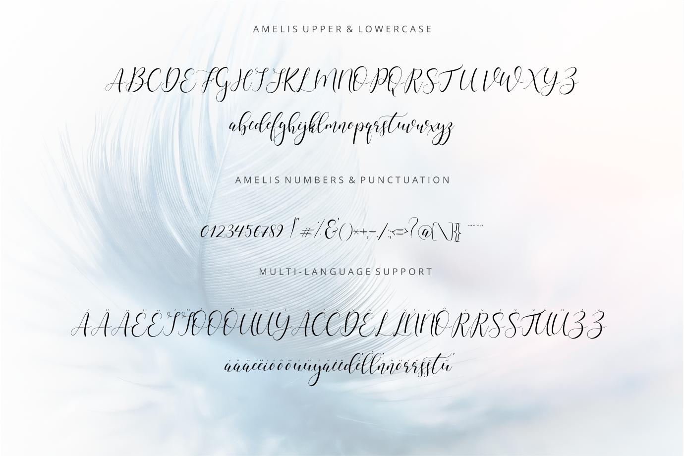 Amelis  example image 5