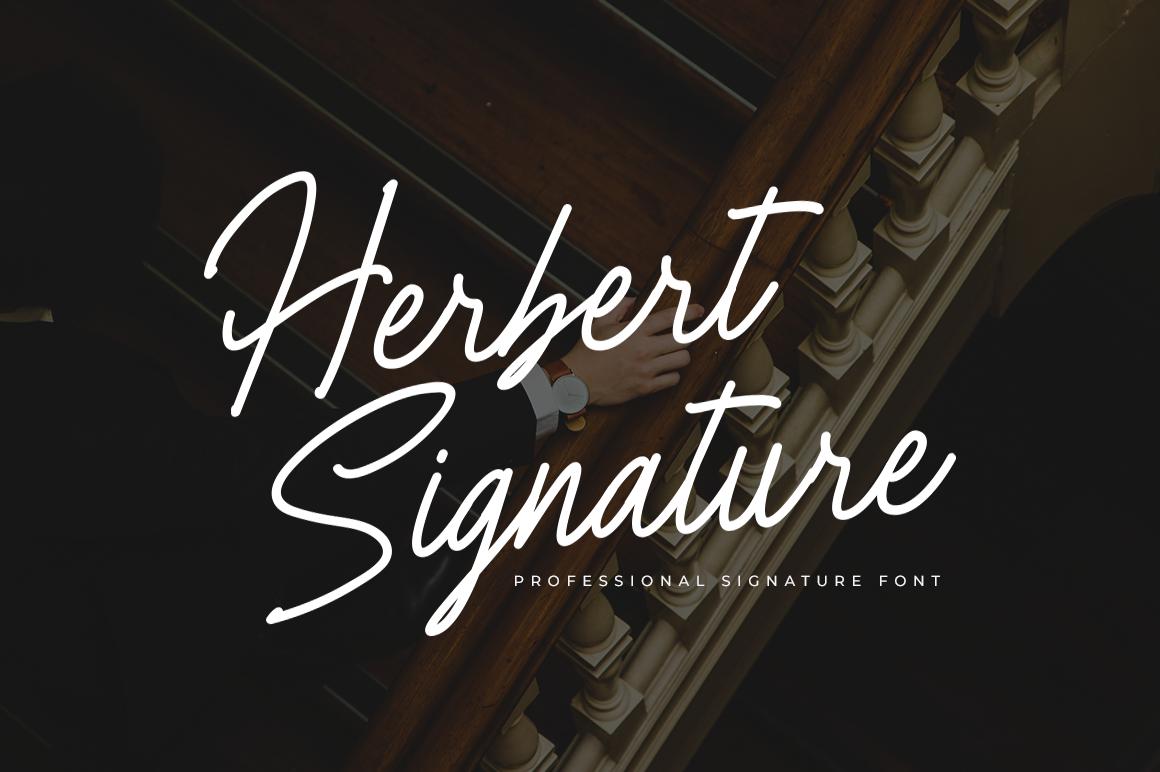 Herbert Signature Font example image 1