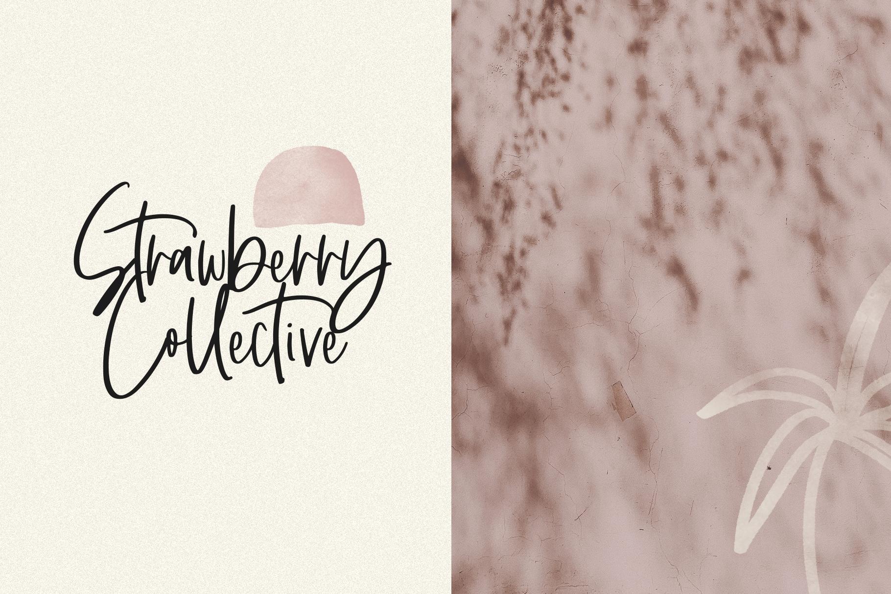 Santonelly - Handwritten Script Font example image 14
