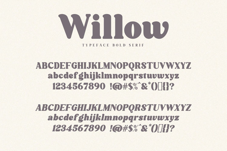 Willow. Typeface Bold Serif example image 10