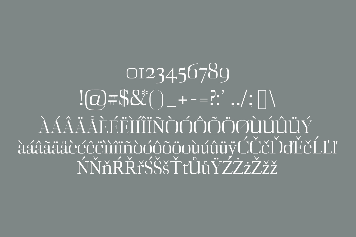Deidra Serif Typeface example image 4