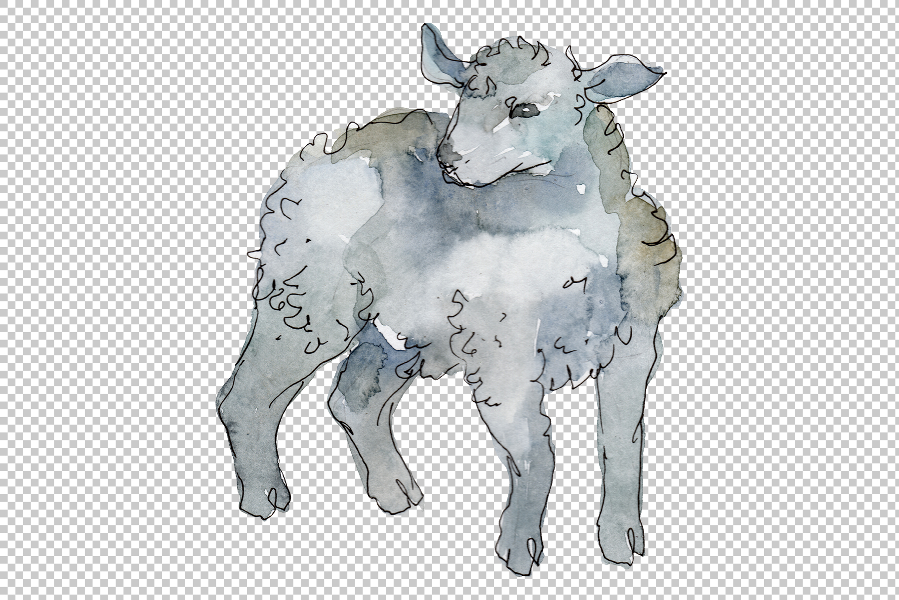 Farm animals lamb Watercolor png example image 6