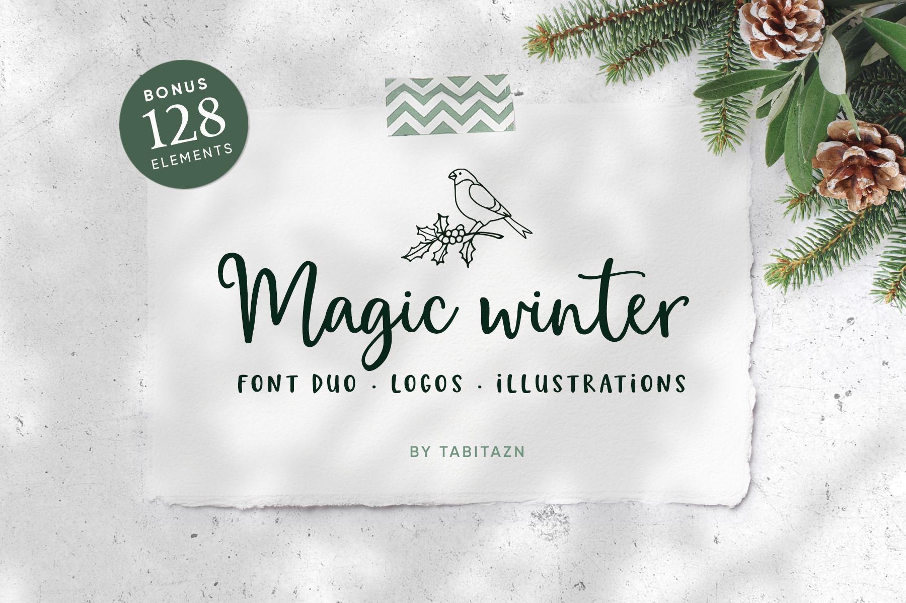 Magic Winter script font duo & logos example image 1