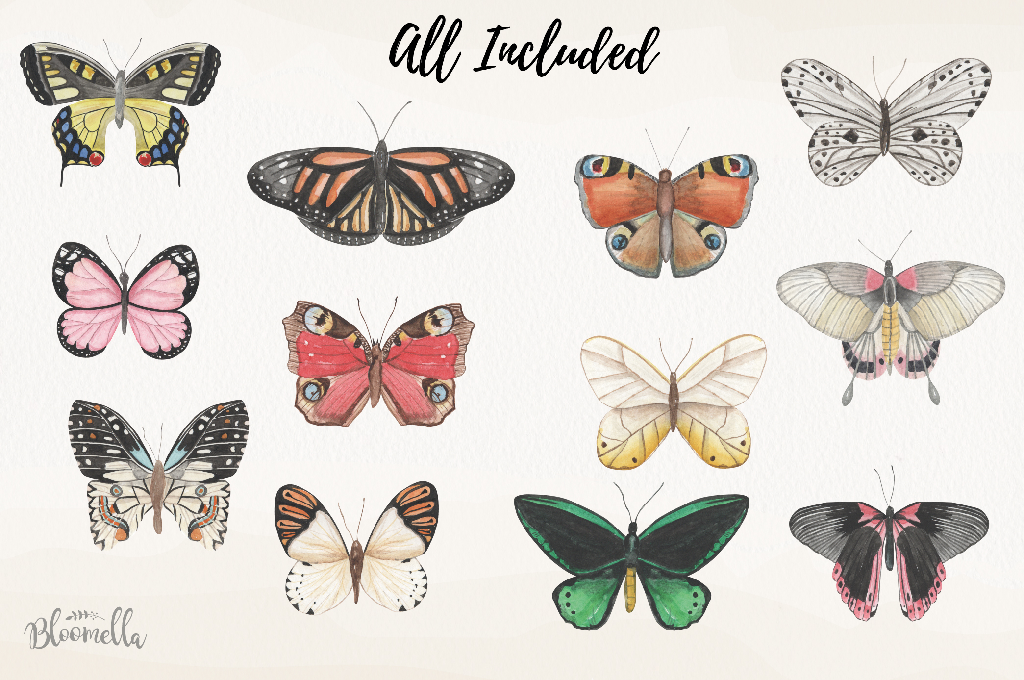 Butterfly Collection 12 Watercolor Clipart Elements Insect example image 4