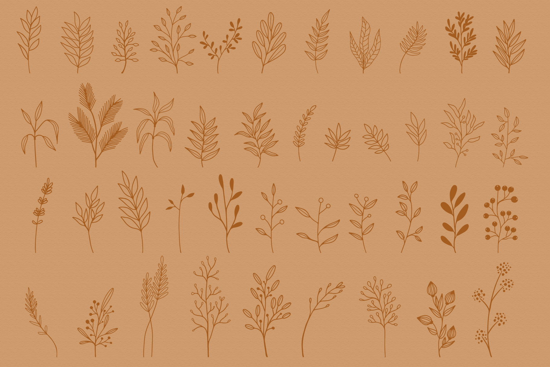 Floral Vector Elements Volume 002 example image 8