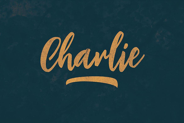 Charlie Script Font example image 4