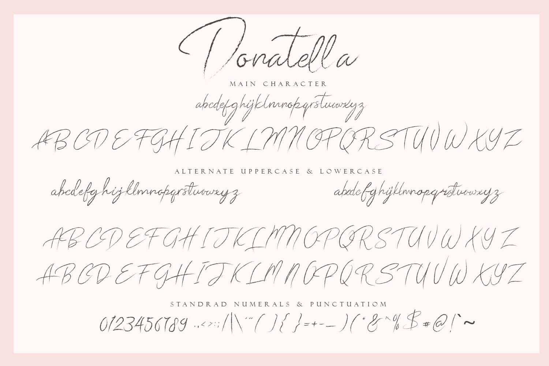 Donatella - Handwritten Font example image 12