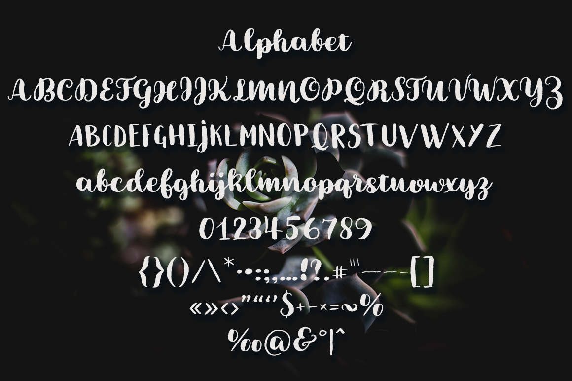 Brushery Font Duo example image 6