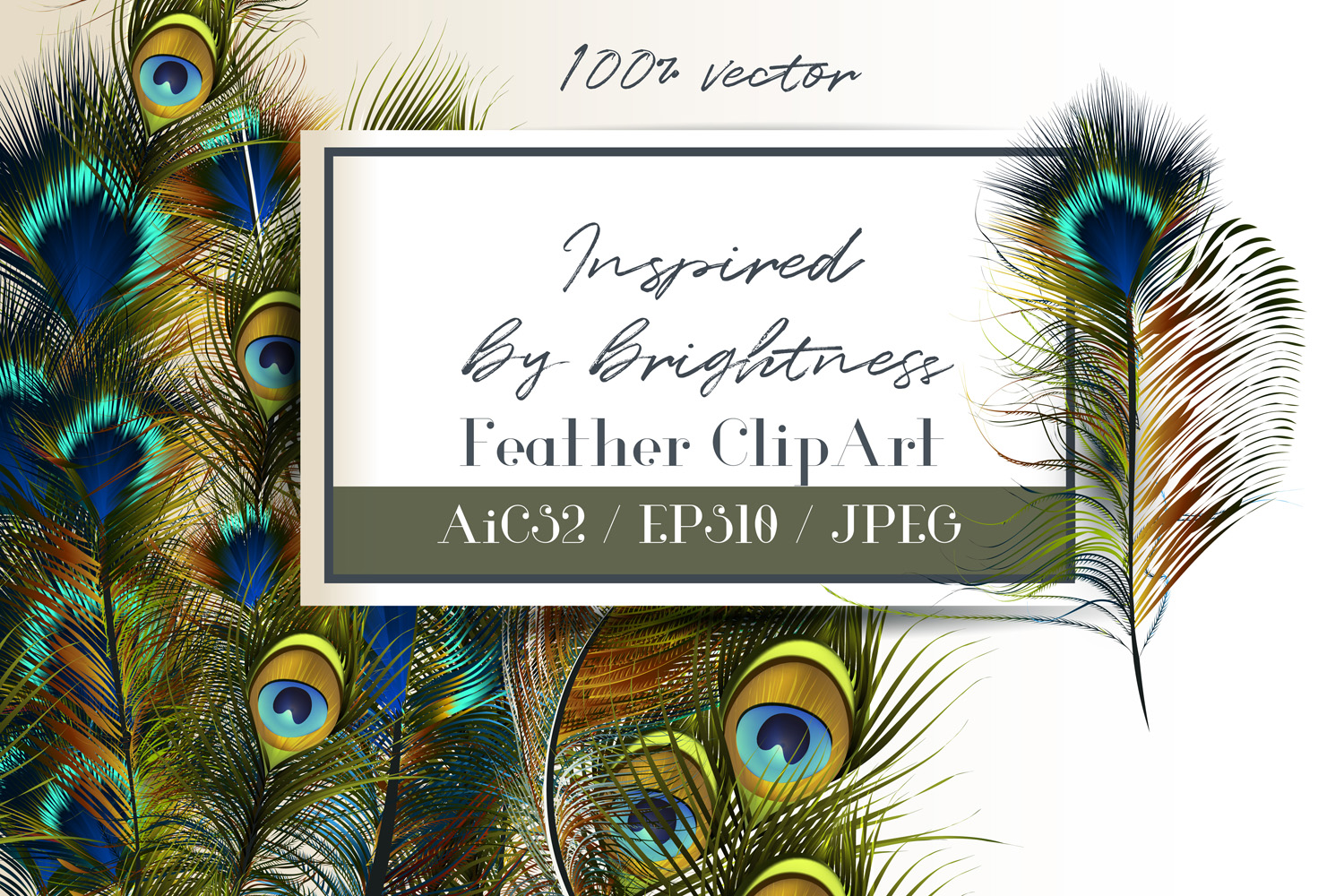 Feathers set. Vector ClipArt example image 1