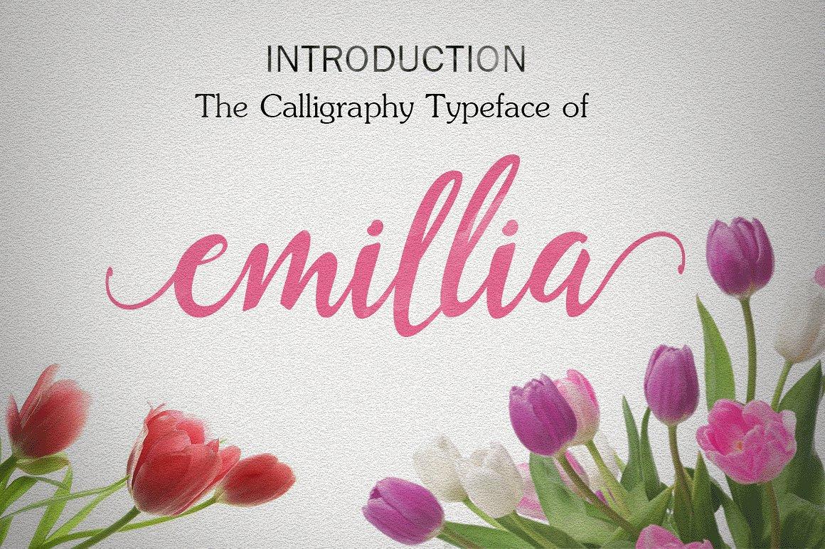 Emillia example image 1
