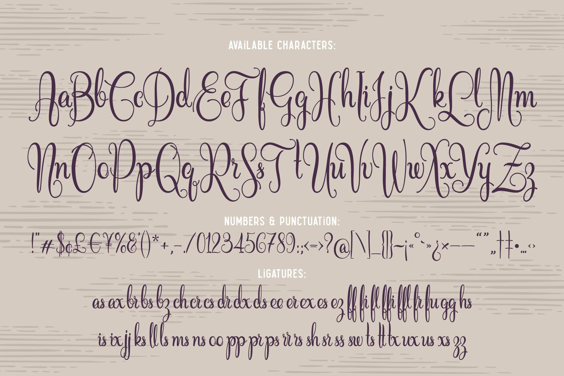 Cidrella script & graphics example image 4