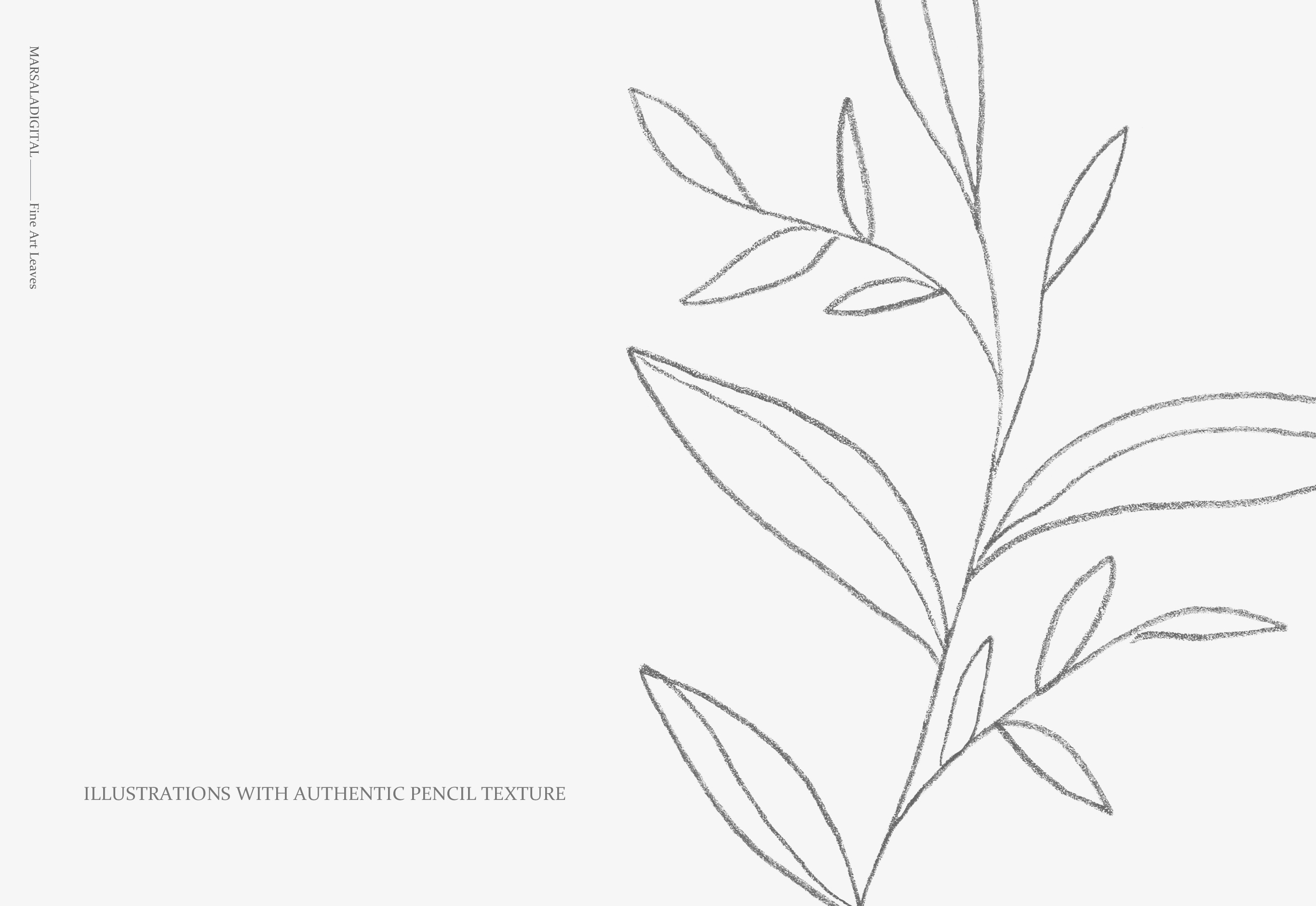 Fine Art Leaves - Pencil Sketches example image 9