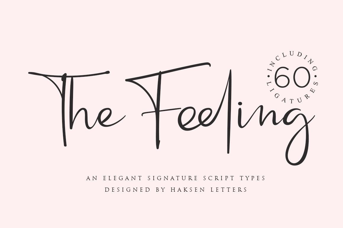 Feeling // an Elegant Script example image 1