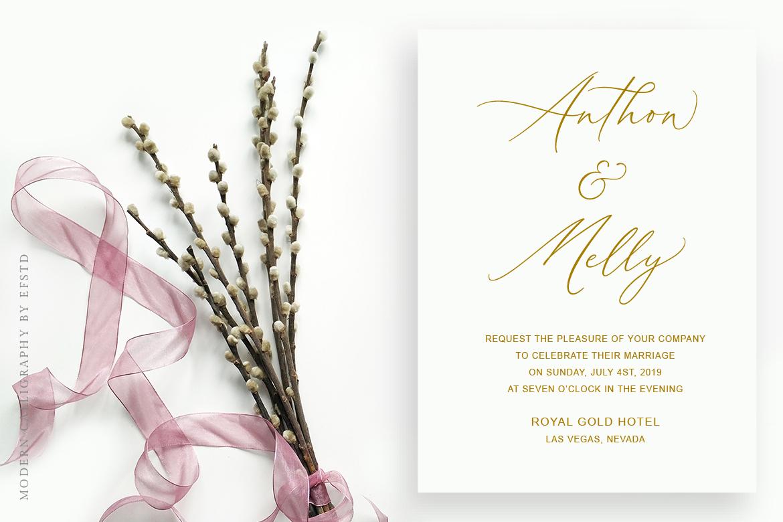 Aerotis, a Modern Calligraphy Font example image 2