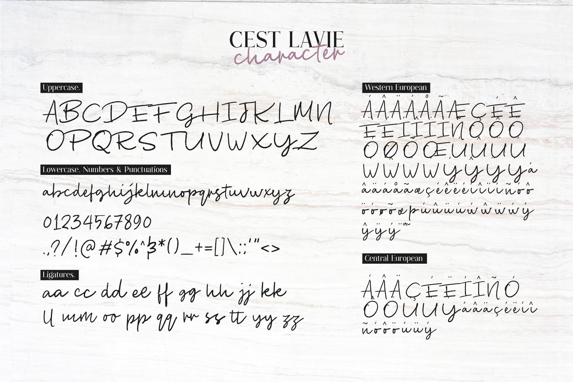 Cest Lavie example image 5