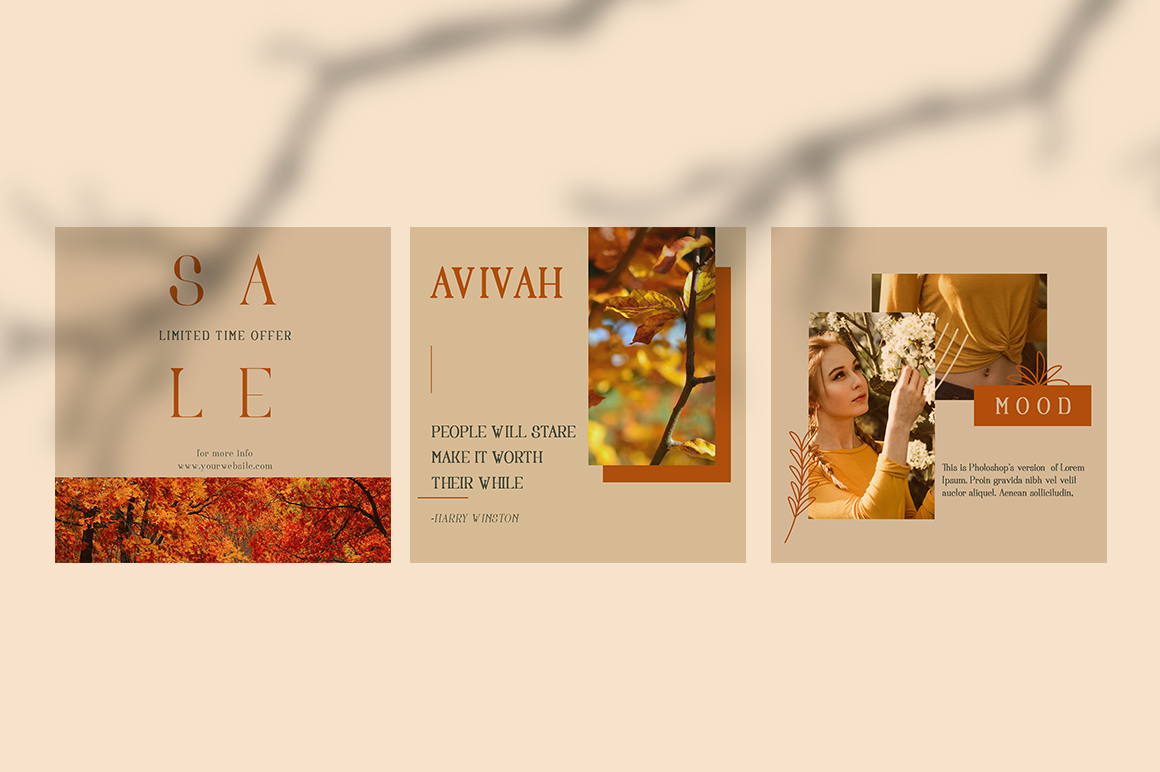 Avivah Autumn Instagram Feed example image 12